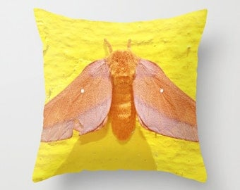 Moth Pillow, Summer Yellow Orange Peach, Insect Bug Decor