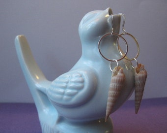 Auger Shell Sterling Silver Earrings