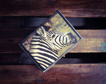 Jewelry Box, Zebra Box, Black African Chest, Africa Keepsake Box, Safari, Nature Woodland inspired