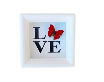 Real Butterfly Shadowbox Home Decor - Butterfly Framed Art, Butterfly Decor, Framed Butterfly, Real Butterfly