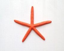 Coral decor starfish perfect for wedding decor tables nursery beach house bath island tropical preppy nautical coastal lake home red orange