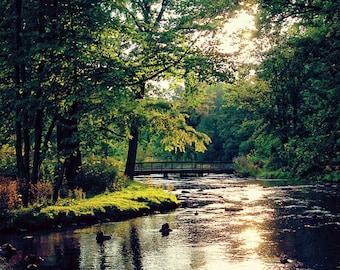 Sunset on the Creek 3 - Michigan Fine Art Photography - Kalamazoo Fine Art Photography