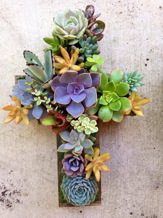 Succulent living cross small hang or stand centerpiece