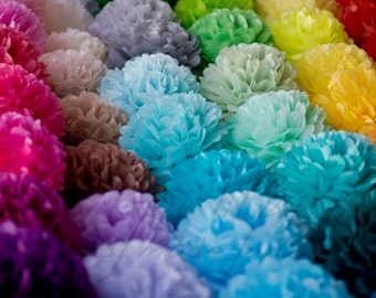 "1 MEDIUM 10"" / 28cm  tissue Pom Pom - 64 colors - hanging birtday - wedding party decorations"