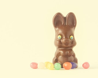 Easter Bunny Rabbit Chocolate Candy Jellybeans Pastel Yellow Pastel Colors Spring Springtime Fun Whimsical Photograph,  Fine Art Print
