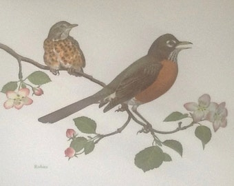 Set of 2 Vintage  Botanical Bird Print Placemats Wall Art Set of Two  Wall Decor Signed  Chuck Ripper  Robin Mockingbird