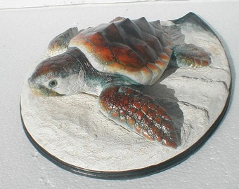 Loggerhead Sea TURTLE 12 x 4 in
