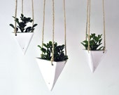 Trending Hanging Triangular Geo Planter White for Succulents and Air Plants