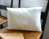 Custom Order for Gailan Pillow Insert