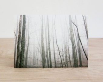 Blank photo note card set of four nature photography greeting cards by Julia Paul Pottery.