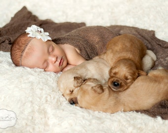 Ivory Mocha Flower Headband, Baby headband, Newborn Headband, Baby Girl Flower Headband, Photography Prop