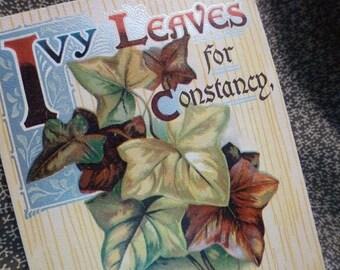 IVY Leaves for Constancy 1909 vintage postcard