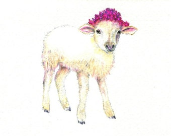 "Little Lamb art print of an original drawing available 5x7"" or 8x10"""