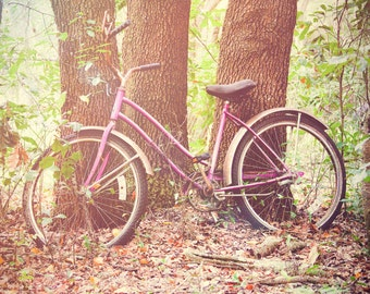 Purple Bicycle Abandoned in Forest Woods  - Fine Art Photography Print Picture