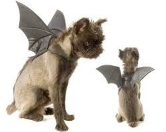 Bats Wings for Pets; dogs and cats