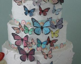 Edible Butterflies 40 Mixed - Little Hope Cakes