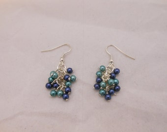 Blue and Green Grape Beaded Earrings