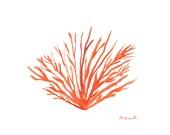 50% off Orange sea coral art, original watercolour painting, sealife art, sea coral decor, 10 x 7 inch