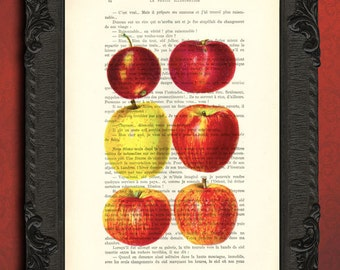Apple kitchen decor, red apple art print, illustration on book page, farmhouse decor, apple tree poster, farmhouse antiques