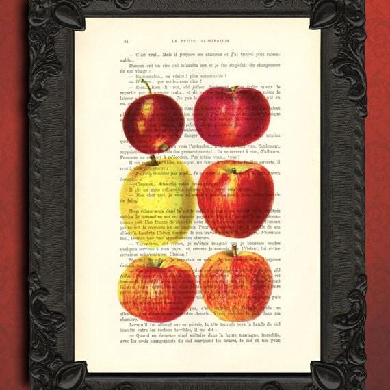 Apple Kitchen Decor Red Apple Art Print Illustration On Book