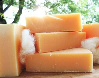 SUNSILK - Solid Shampoo Bar - Citrus Silk Shampoo Bar Soap - Lemongrass, Blood Orange & Real Silk