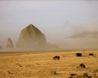 oregon photography - haystack rock photograph - fine art photograph - yoga studio art - meditation print - cannon beach - sandy beach