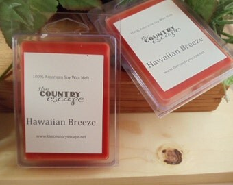 Hawaiian Breeze 100% Soy Wax Melt - Exotic Tropical Paradise Scent- Strong Scent