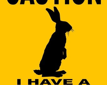 "RABBIT Sign 9""x12"" ""ALUMINUM"" DSRR1"