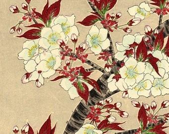 Sakura decor etsy for Japanische blumenkunst