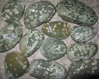 "12 Turtle Rocks, 2.5""- 4""  NW Native Rock, Natural and Unique,Craft Rock,River Rock,Beach Rock"