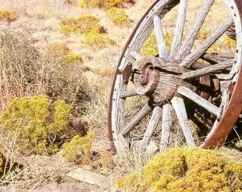 Rustic Art Wagon Wheel 1 Sage Brush Prairie Primitive Old