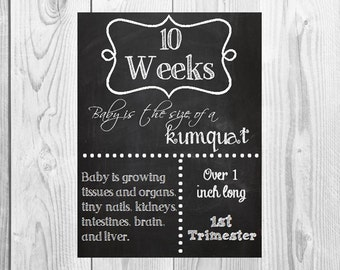 ALL 16 Printable File Pregnancy Chalkboard  Weeks - from 1st, 2nd, 3rd  Trimester