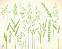 Grasses, wild herbs, wildflowers, plants, flora, botanical, bent grass, vector silhouette F
