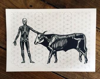 LIMITED Sacred Black Bones 2 - Tattoo print
