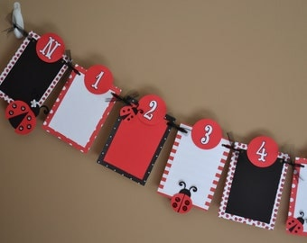 Ladybug Sparkle Newborn to 12 Months Photo Banner - Birthday Party - 1st Birthday