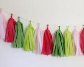Pink/Lime Green Tissue Paper Tassel Garland - Preppy - Petite Party Studio