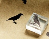 Small Crow Stamp #1 - Southern Rubber Stamp - Bird Stamp - Raven Stamp 1 x 1 inches