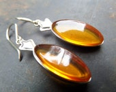 Genuine Amber Earrings,Cognac Amber Earrings,Raw Amber Earrings,Baltic Amber Earrings,Gold Amber Earrings