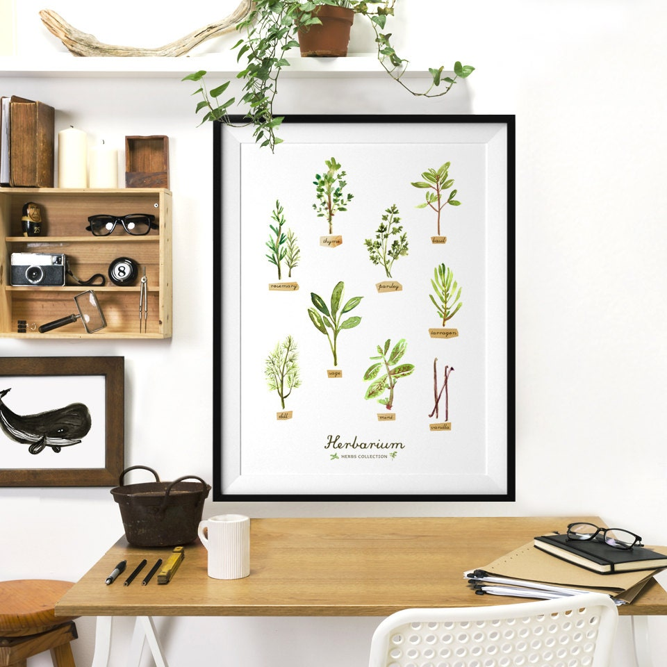 Kitchen Herbarium Art: Watercolor Herb Kitchen Poster Botanical Chart HERBARIUM