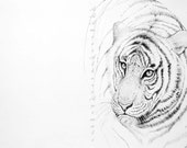 "Ink ""Portrait of tiger"" wildlife, wall decor - AAAmiciAlberiAnimali"