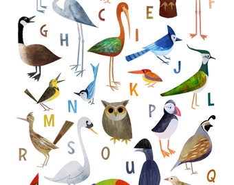 Birds from A to Z!