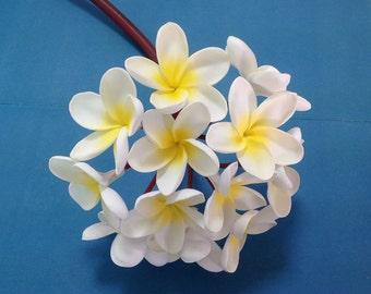 Hawaiian frangipani bouquet flower