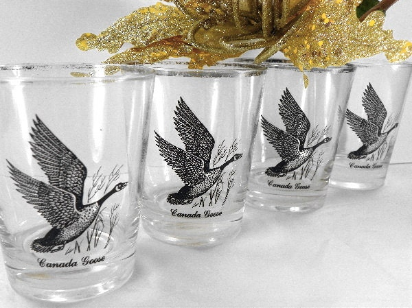 4 Old Fashion Drinking Glasses Canada Goose Federal Glass
