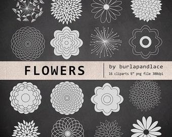 Chalkboard Clipart flower cliparts, Chalkboard flower clipart, dahlia clipart, chrysanths, mum flower, flower cliparts