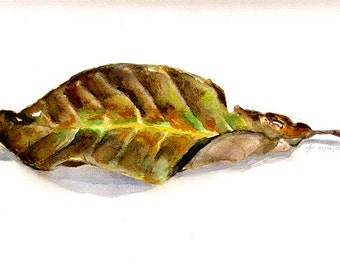 Dry Leaf - Watercolor