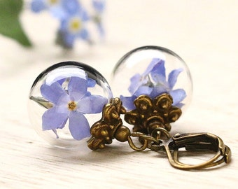 Bronze Forget Me Nots earrings e234