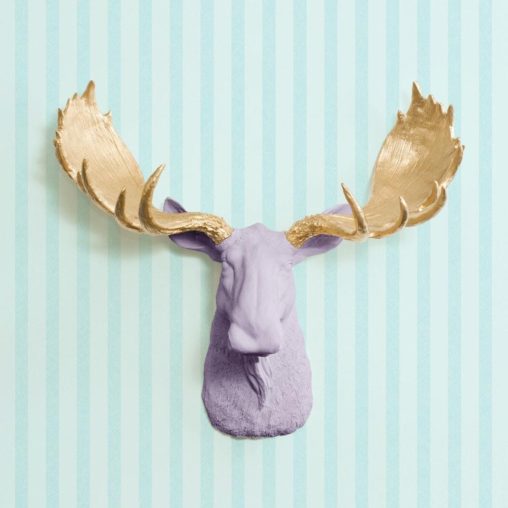 The alberta in lavender gold antler faux moose head fake - Fake moose head ...