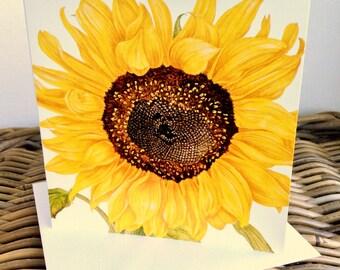 Sunflower 'Russian Giant'  art card - blank inside