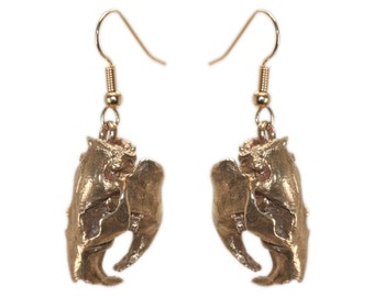 Pair Animal Skull Earrings 3D Printed Jewelry Beaver Skull Earrings Bronze White Bronze 925 Sterling Silver