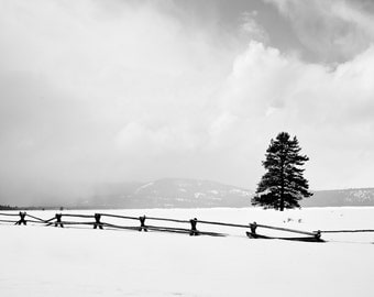 Nature Photography Print, Landscape Photo, Nature Wall Art, Black and White, B&W, Winter Photograph, Outdoor Picture